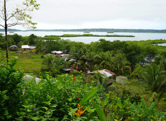 A trip to Bocas del Toro